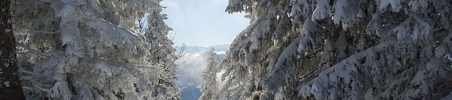 panorama_3.jpg